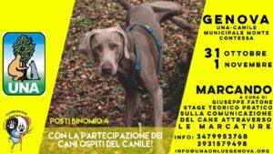 """""""Marcando"""" di Dog's Revolution 1"""